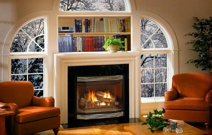 Mendota Direct Vent Fireplace